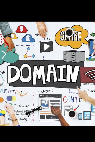 Domain Name Consultation